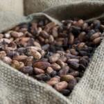 Granos de cafe cofina